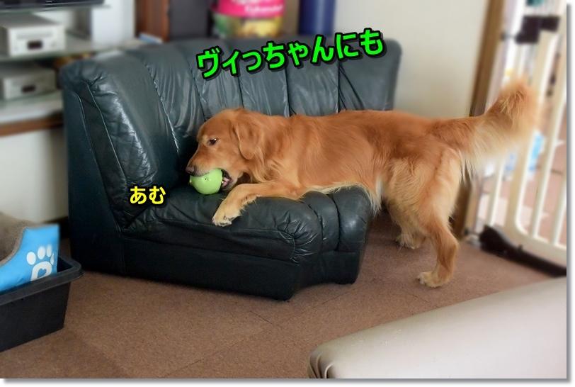 DSC_0063あむっ