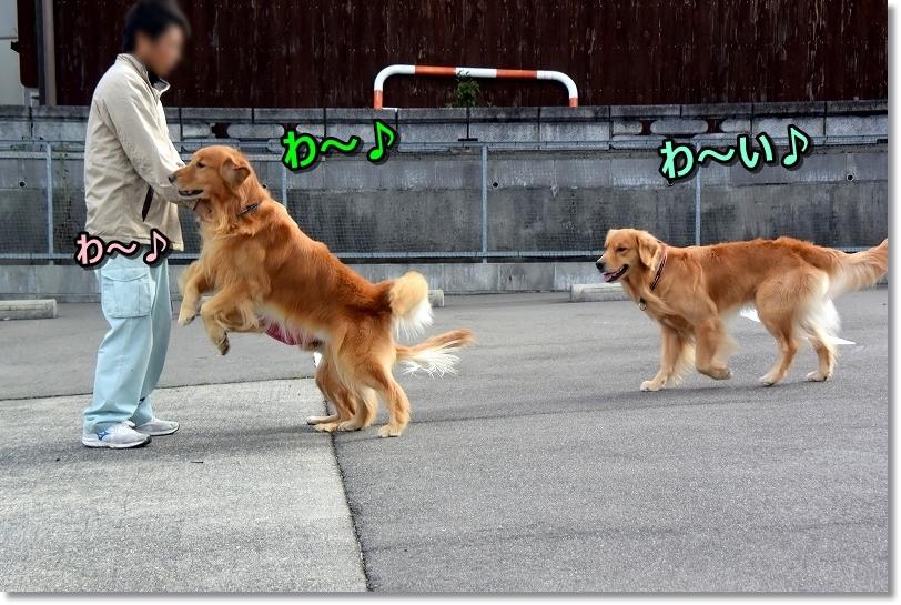 DSC_0372わ~い