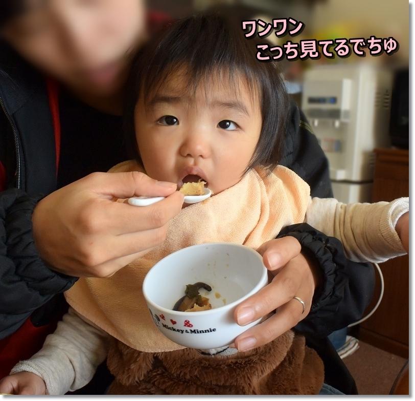 DSC_0520朝食中 しょん何見てたら食べずらい