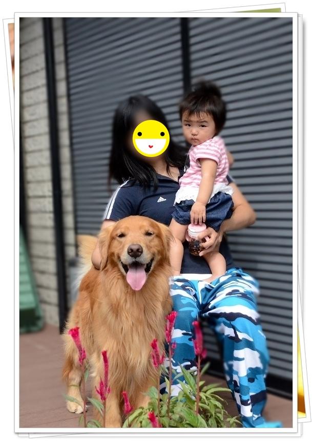 DSC_0037_20171002193817e7d.jpg