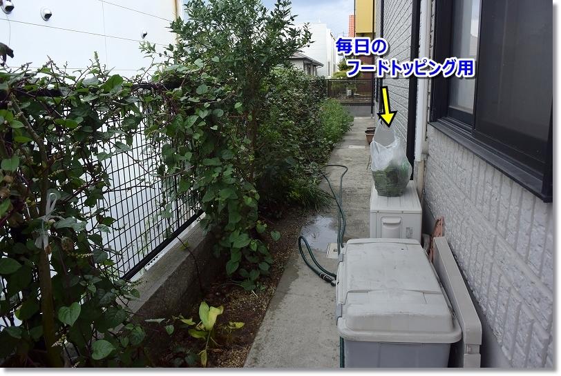 DSC_9438_201709302153480cb.jpg