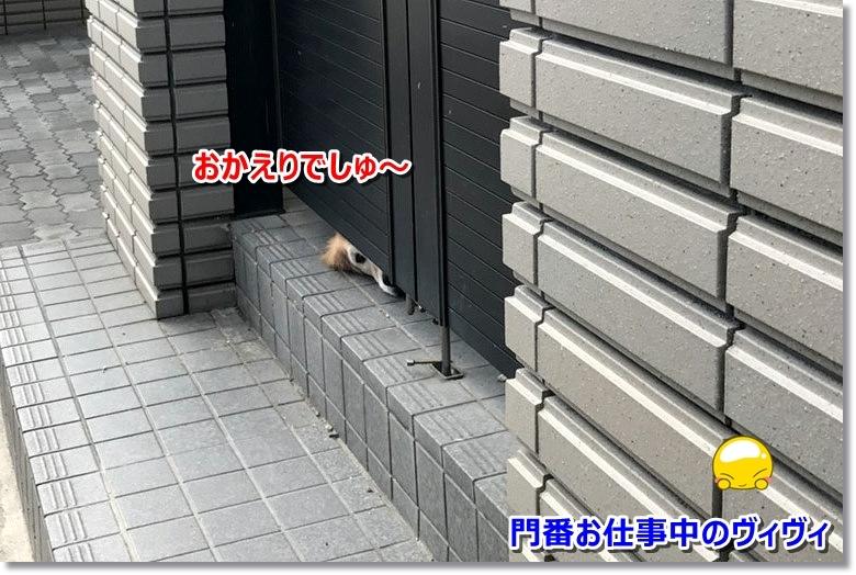 S__8101891.jpg