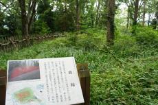 長谷堂城15