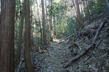 芥川山06