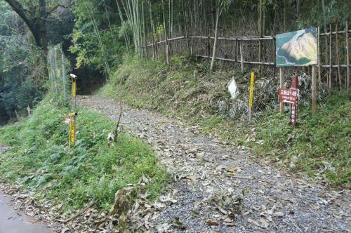 芥川山17