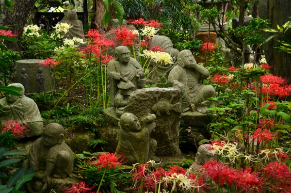常泉寺15