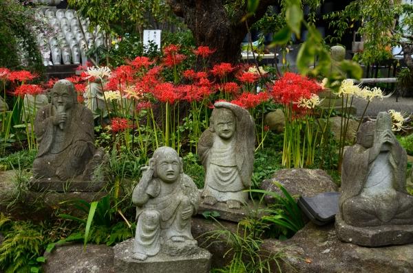 常泉寺14