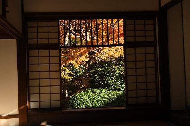 迷いの窓6