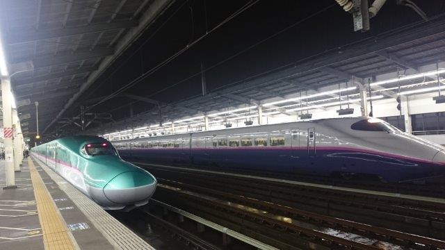 宇都宮駅ビル餃子 (2)