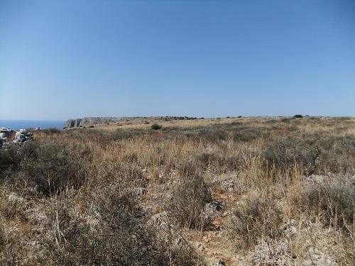 イェロリメナス_西側の台地へ (7)