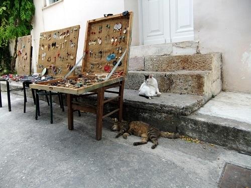アテネ_脇道にいた猫さん (2)
