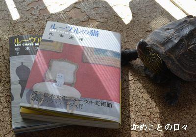 DSC_0411-c.jpg