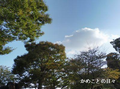 P1000712-a.jpg