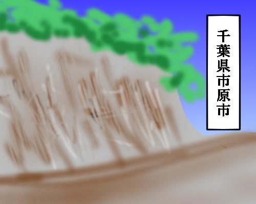 市原市 地層