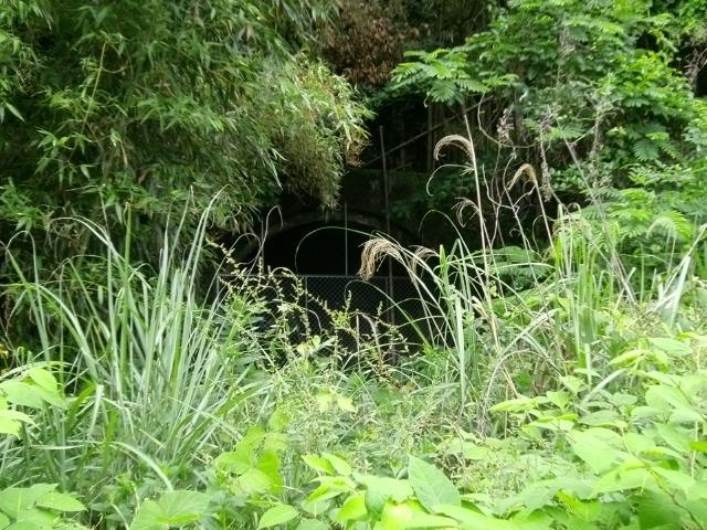 川棚石木地下壕 (7)