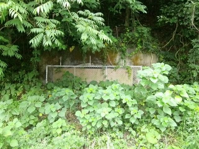 川棚石木地下壕 (8)