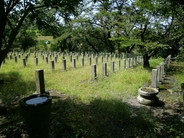 大分陸軍墓地 (7)
