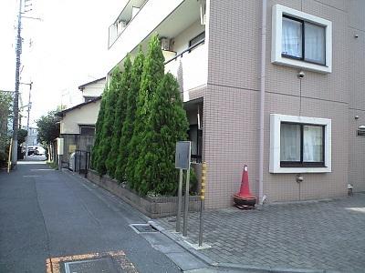 PAP_2927s.jpg
