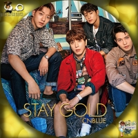CNBLUE STAY GOLD☆汎用