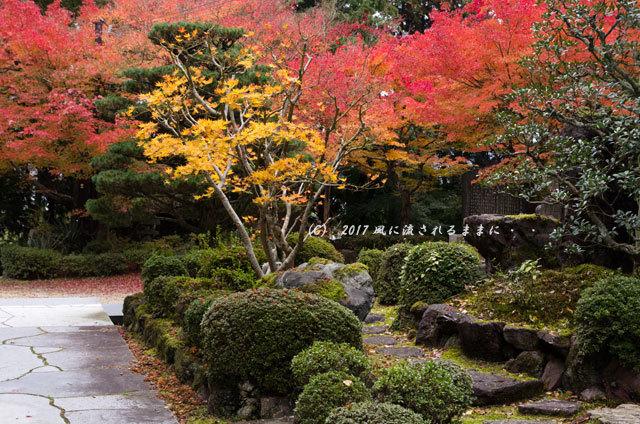 京都・亀岡 苗秀寺(みょうしゅうじ) 紅葉10