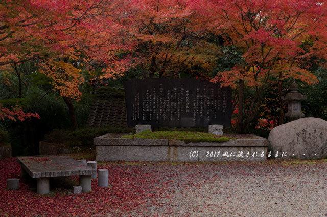京都・亀岡 苗秀寺(みょうしゅうじ) 紅葉4