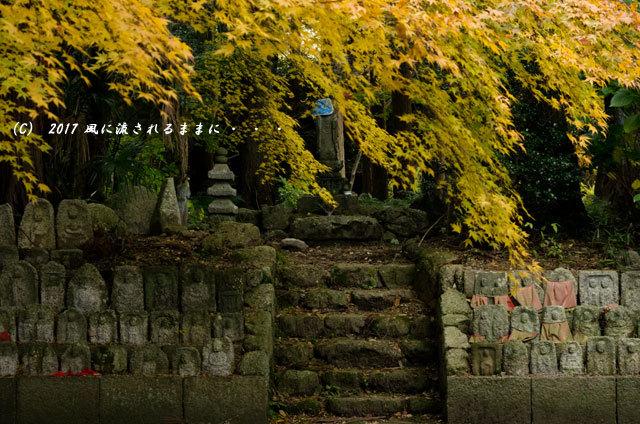 紅葉の情景 奈良・九品寺 紅葉10