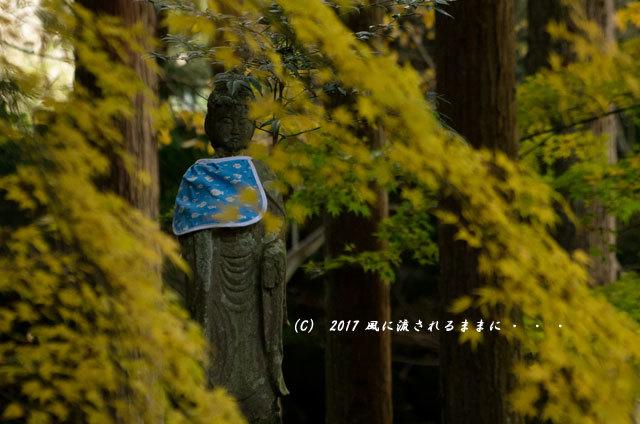 紅葉の情景 奈良・九品寺 紅葉9