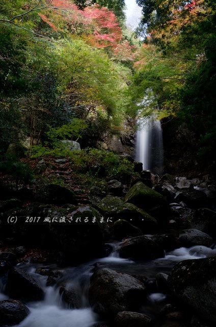 三重・白藤の滝 紅葉 2017年11月11日撮影1