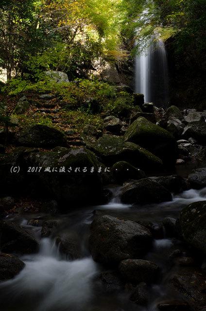 三重・白藤の滝 紅葉 2017年11月11日撮影6