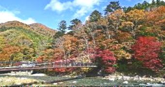4201-340紅の吊橋