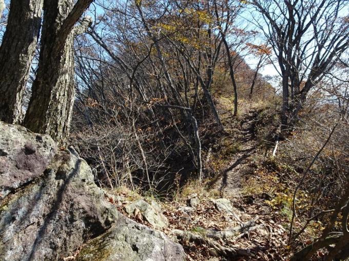 ヤセ尾根を歩いて水沢山へ