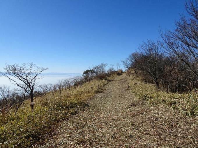 山頂へのビクトリーロード