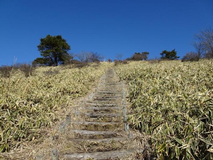 山頂へのビクトリーステップ