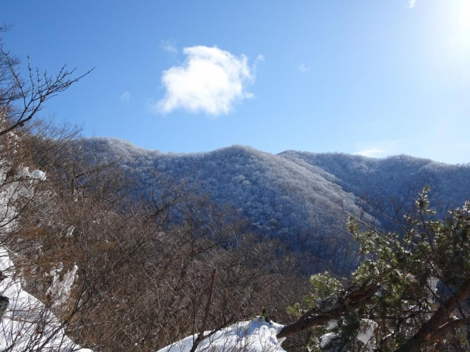 駒ヶ岳稜線も真っ白