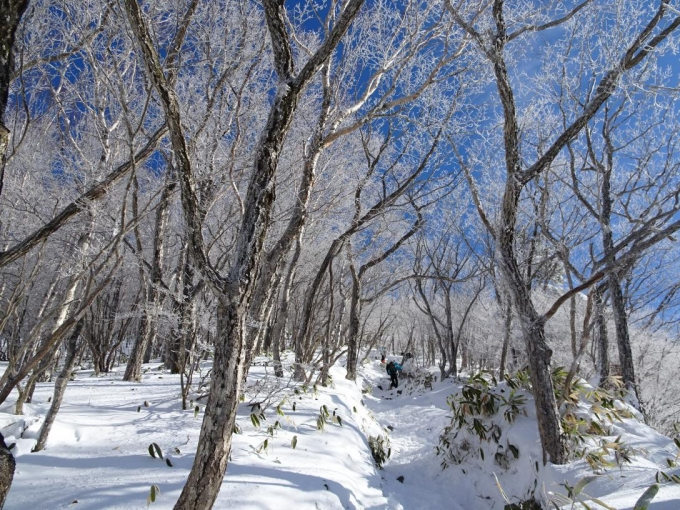 急登を黒檜山へ