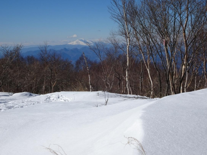 浅間山遠望