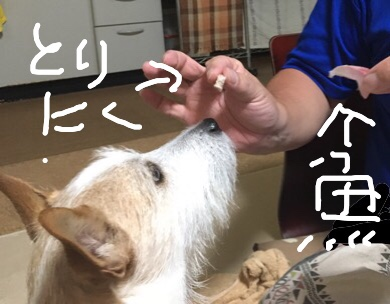 fc2blog_20171102132845544.jpg