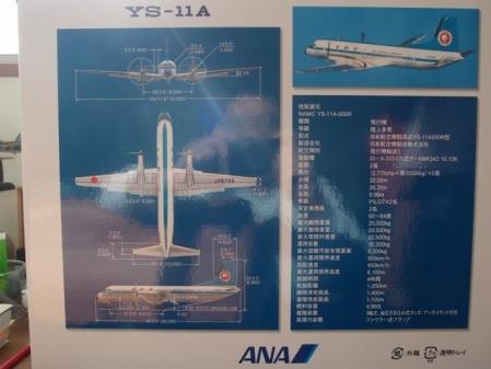 YS-11裏