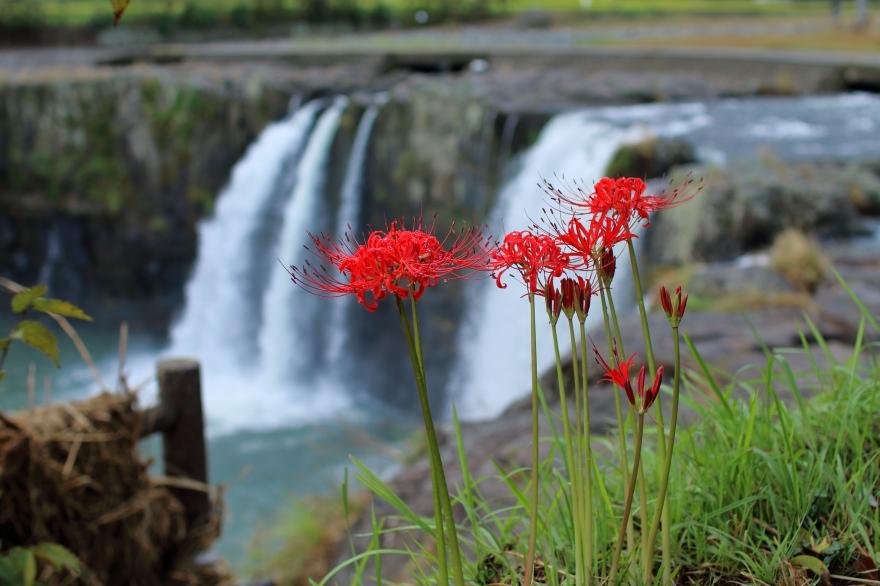 原尻の滝 (3)