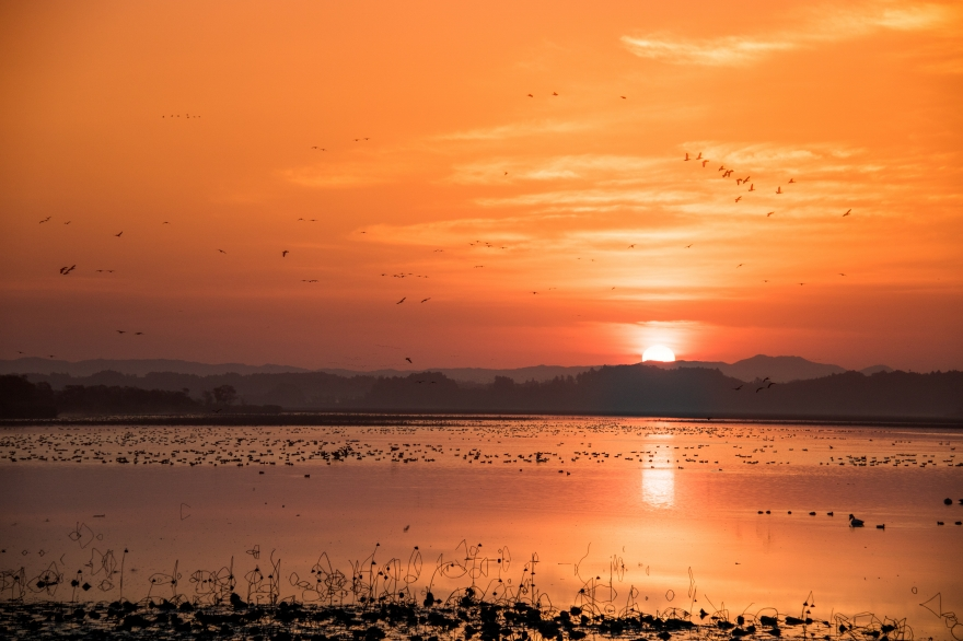 伊豆沼の朝1