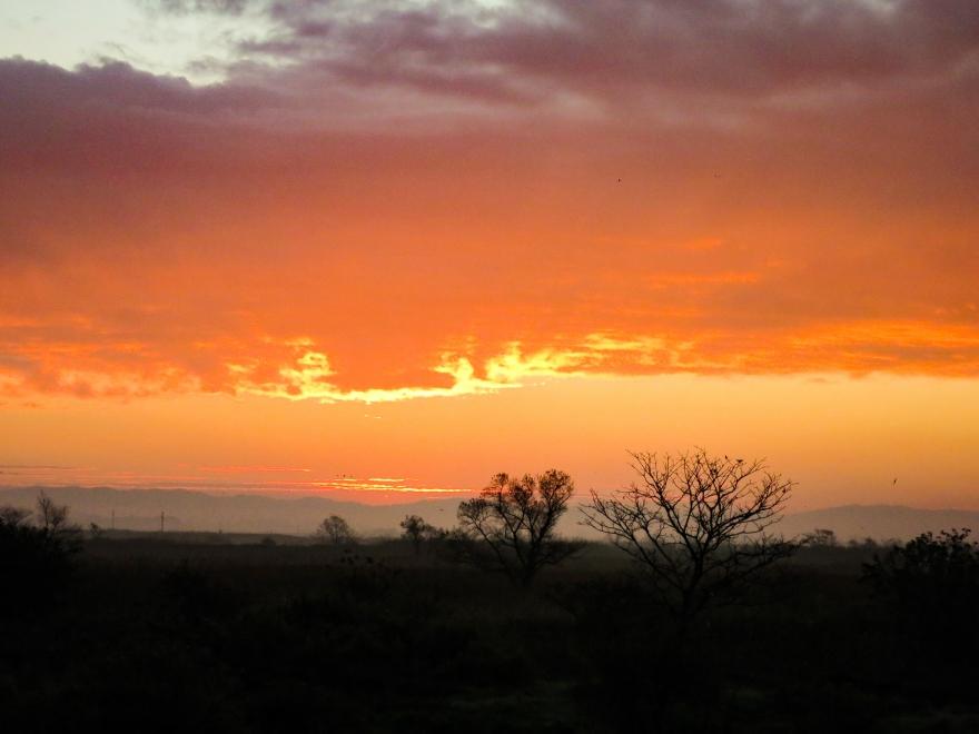 蕪栗沼の朝