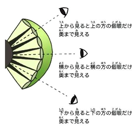 hyogo_no_kamakiri_intro-page7-3.jpg