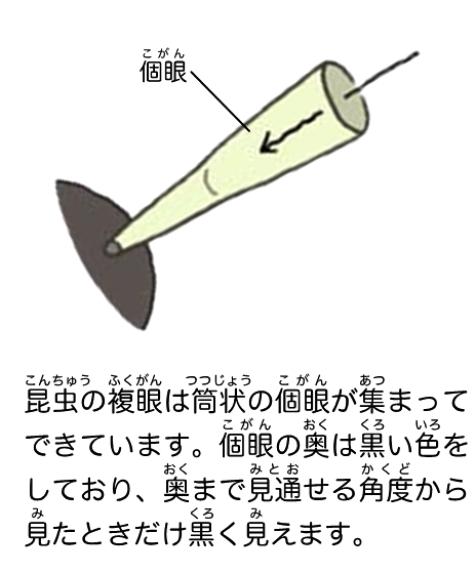 hyogo_no_kamakiri_intro-page7-4.jpg