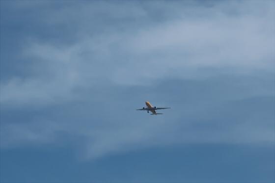 航空機の写真01