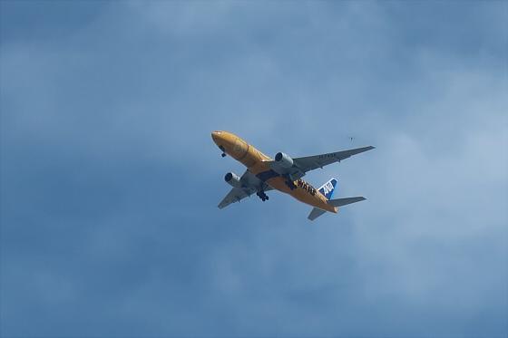 航空機の写真02