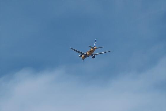 航空機の写真06