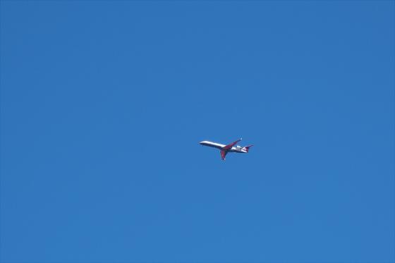 航空機の写真12