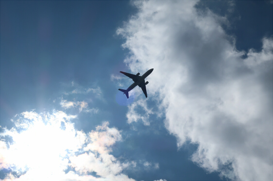 航空機の写真13