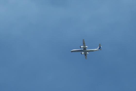 航空機の写真15