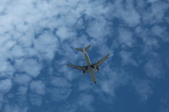 航空機の写真16